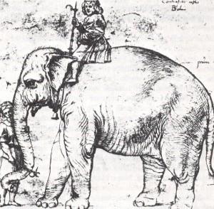 elephant_and_rider